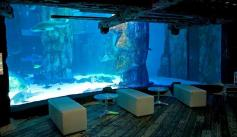SEALIFE_London_bar_area
