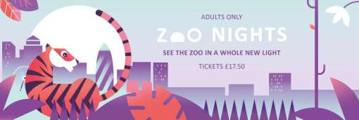 Zoo Nights banner